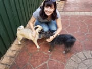 I am energetic, friendly and I love dogs.
