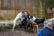 Reliable Animal Lover available for Pet Sitting