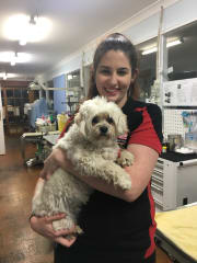 Young Vet Nurse Looking for Pets to Care For