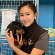 Dedicated and passionate in providing optimal pet care