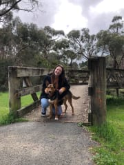 Responsible Energetic and Fun Pet Walker & Minder in Collingwood