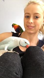 Animal Lover With Vet Nursing Background
