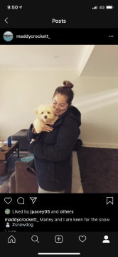 Loving, Reliable and Experienced Pet Sitter