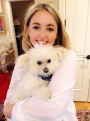 Professional and Trustworthy Pet Friend in St Kilda