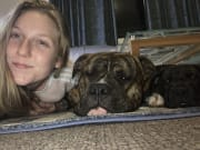 Huge dog person, reliable and super caring.!