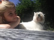 Caring pet sitter with experience