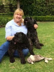 Reliable and caring pet sitter