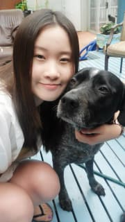 Loving person, mercy, reliable, love dogs, trustworthy