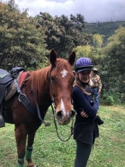 Friendly pet sitter, owned horses dogs chooks and cats