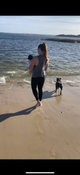 Reliable and caring dog sitter (Matraville area)