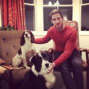 Friendly dog walker/sitter in Hawthorn
