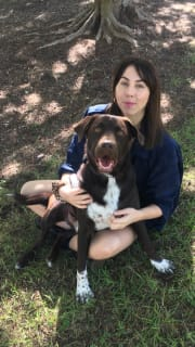 Animal lover looking to provide care and exercise to dogs!