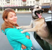 As an owner of dog I responsible and love walking.