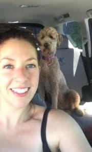 Reliable pet sitting & dog walking