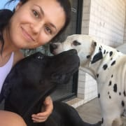 Friendly and Reliable Dog Walker/ Pet Sitter in the Redlands