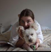 Caring eager & reliable pet carer & walker