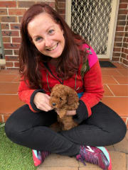 Experienced, caring, reliable pet sitter