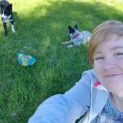 Airport West and surrounding Dog Walker (also House Visiting)