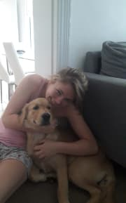 Trusworthy, reliable, caring, gentle, dog loving pet sitter