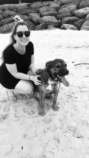 Experienced Dog & Cat Mum, Animal Lover, Respectful & Reliable