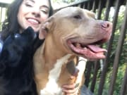 Reliable, safe, loving pet sitter