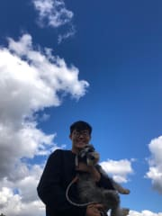 Experienced and reliable dog owner