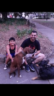 Full time dog trainer with over 10 years experience.