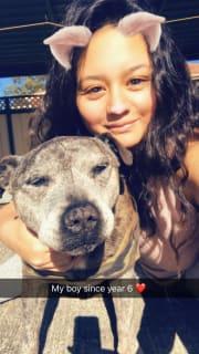 FUN LOVING pet caring Family