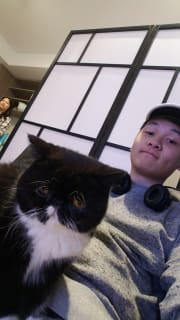 Friendly and caring, wholesome pet sitting.