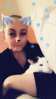 Reliable/caring animal lover & long time pet carer/walker