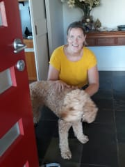 Reliable and Caring Pet Sitter/Dog Walker