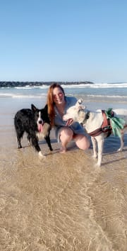 Reliable, passionate, caring pet sitter