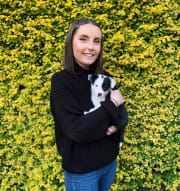 Pet Lover who adores caring for animals