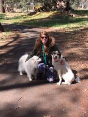 Reliable pet sitter Dubbo region