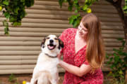 Reliable pet sitter Dubbo region