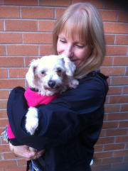 Experienced house and pet sitter for many years