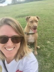 Fun, friendly and reliable dog walker and sitter