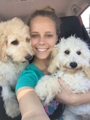 Whitsunday's Best and Most Reliable Pet Sitter