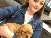 Caring and knowledgeable pet and house sitter
