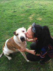Reliable, responsible and caring pet sitter!!!