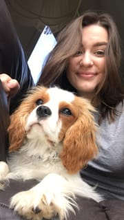 Reliable pet sitter who loves animals