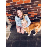 Reliable and caring pet sitter that loves animals!