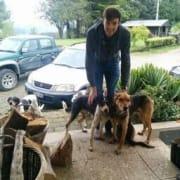 Dogs Best Friend - Energetic Port Macquarie Pet Sitter