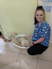 Reliable and loving pet sitter and walker