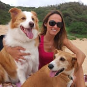 Dogs lover in the Northern Beaches