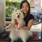 Reliable and happy pet sitter
