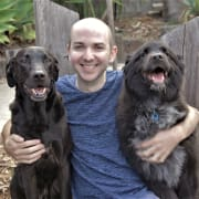 Dan's Super Dog Care - Reliable Friendly Dog Minder