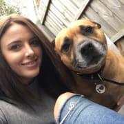 Friendly and Loving Pet Owner - Pet sitting Reservoir