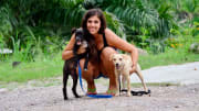Loving, Caring and Experienced Pet Sitter