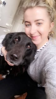 Reliable and loving pet sitter/walker
